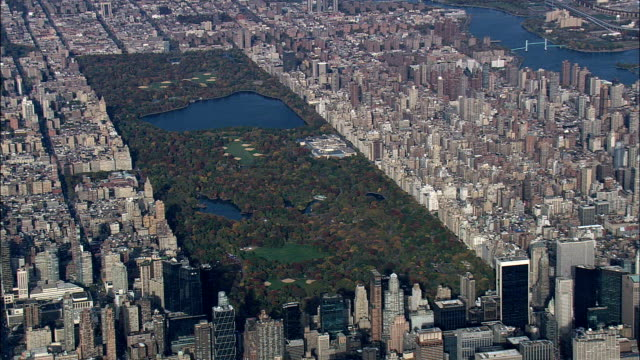 central park - aerial view - new york,  new york county,  united states - central park manhattan stock videos and b-roll footage