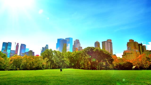 vídeos y material grabado en eventos de stock de central park y la zona residencial de uptown. - parque ciudad