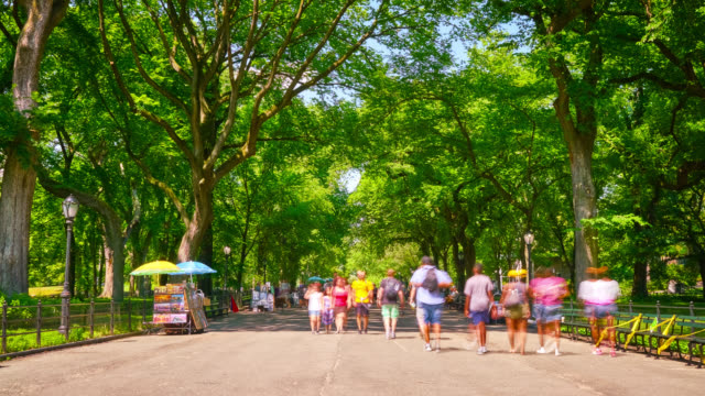 stockvideo's en b-roll-footage met central park ten dage, new york - weekend activiteiten