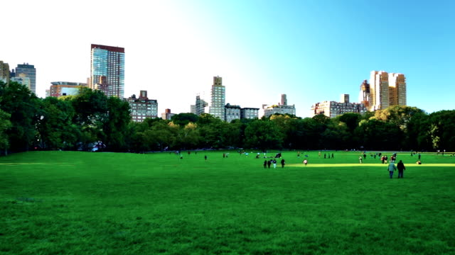 Central park at New York