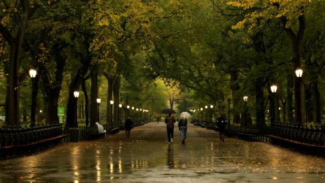 central park autumn rain - pedestrian walkway stock videos & royalty-free footage