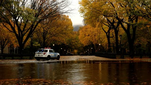 stockvideo's en b-roll-footage met central park herfst regen - central park manhattan