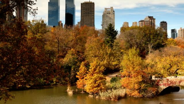 central park autumn views - central park manhattan stock videos & royalty-free footage