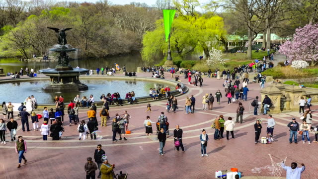 TIME LAPSE, Central Park, Bethesda Terrace, New York City