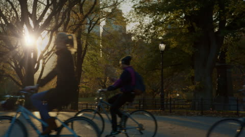 central park bicycles at sunset new york city - central park manhattan stock videos & royalty-free footage