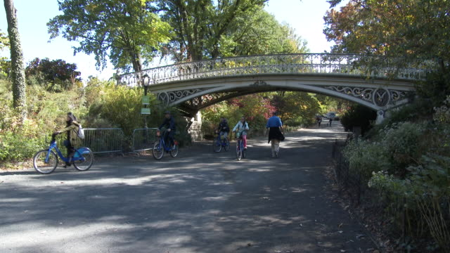 central park bridal path, tourists, autumn colors, fall foliage nyc - sotto video stock e b–roll