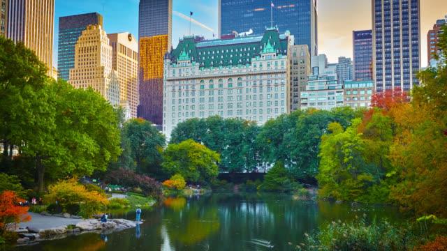セントラル パーク - 都市と建築 - マンハッタン セントラルパーク点の映像素材/bロール