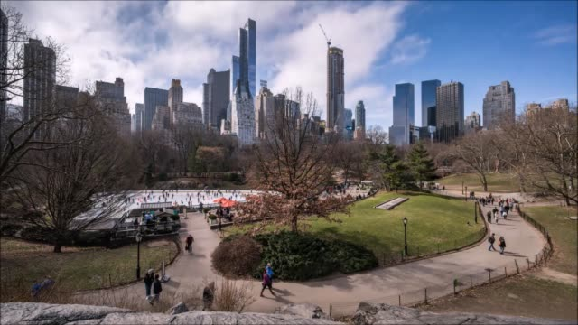 vídeos y material grabado en eventos de stock de central park cloud time lapse - árbol latente