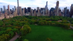 Central Park in New York / Aerial