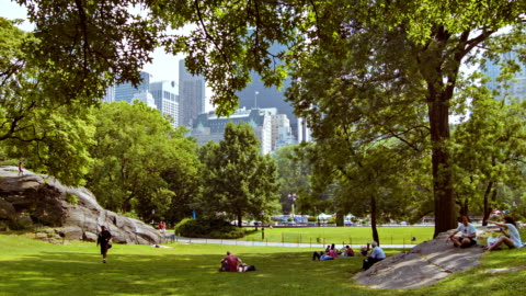 central park in new york - central park manhattan stock videos & royalty-free footage