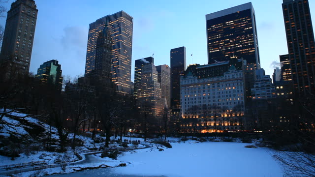 central park in winter - pond stock videos & royalty-free footage