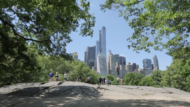 central park, manhattan, new york city, new york, usa, north america - central park manhattan video stock e b–roll