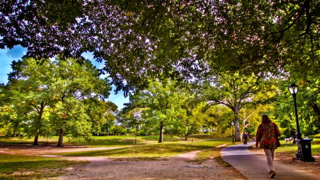 vídeos y material grabado en eventos de stock de central park ciudad de nueva york - parque natural