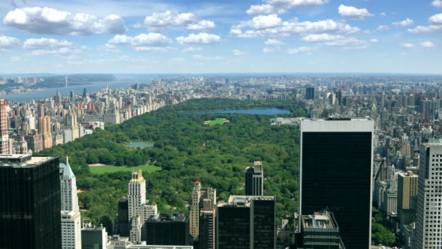 central park, new york - central park manhattan stock videos and b-roll footage