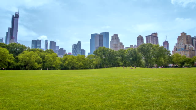 central park, new york - public park stock videos & royalty-free footage