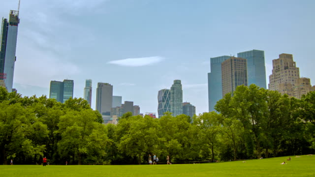 central park new york - lawn stock videos & royalty-free footage