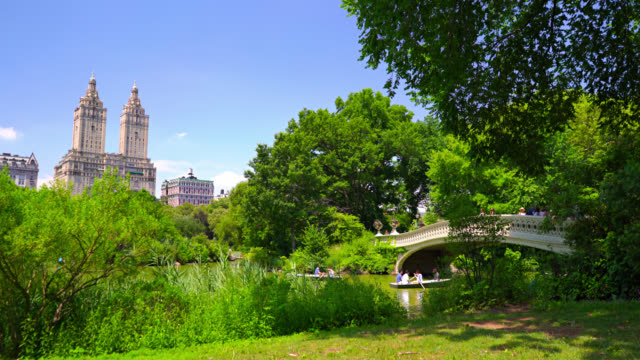 central park new york - pond stock videos and b-roll footage