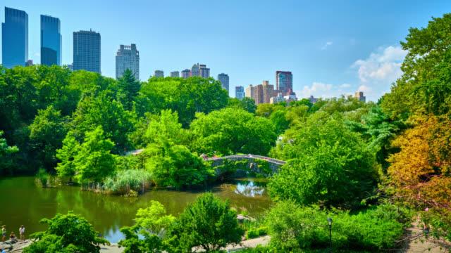 セントラル・パークニューヨーク - マンハッタン セントラルパーク点の映像素材/bロール