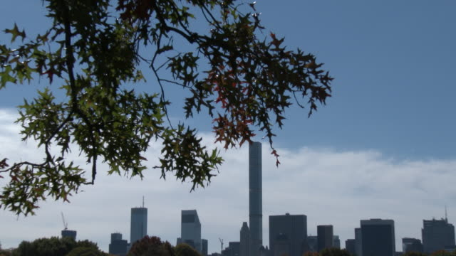 central park nyc - great lawn, fall colors, nyc skyline - great lawn stock videos and b-roll footage