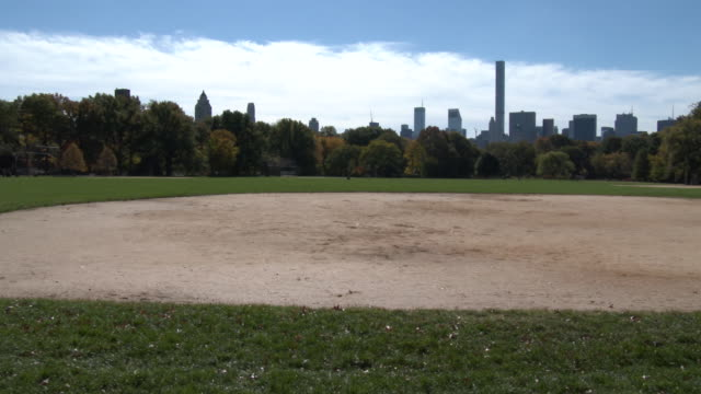 Central Park NYC - Great Lawn & NYC Skyline