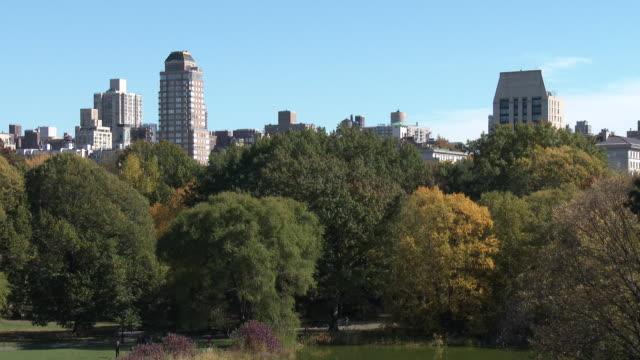 vidéos et rushes de central park nyc in autumn - fall foliage, 5th avenue high rises - avenue