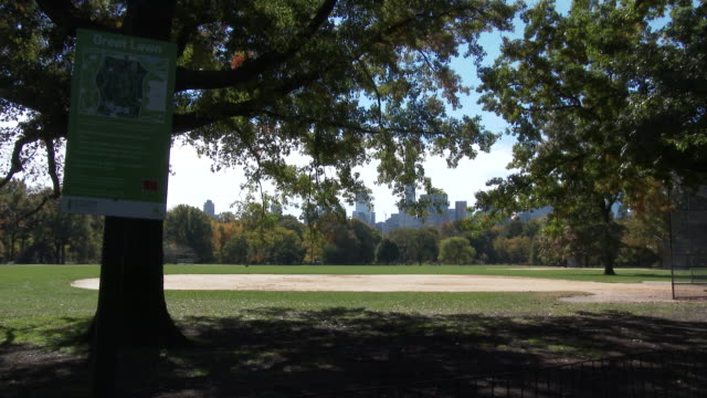central park nyc in autumn - great lawn - great lawn stock videos and b-roll footage