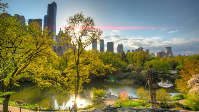 Central Park overview Sunset with beautiful sun flare