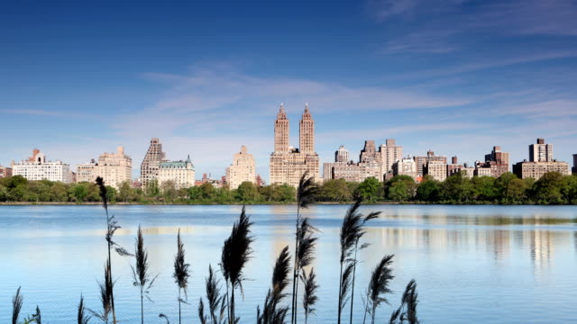 central park reservoir - upper west side manhattan stock videos and b-roll footage