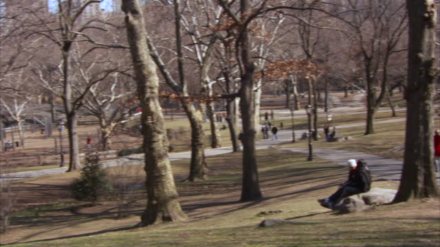 ms zo central park scene with playground on sunny winter day / new york city, new york, united states - 巨礫点の映像素材/bロール