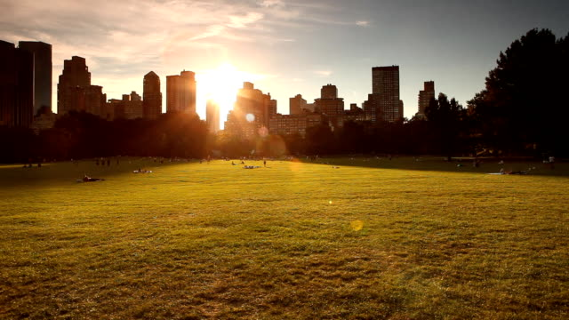 central park sheep meadow panorama - sheep meadow central park stock videos and b-roll footage
