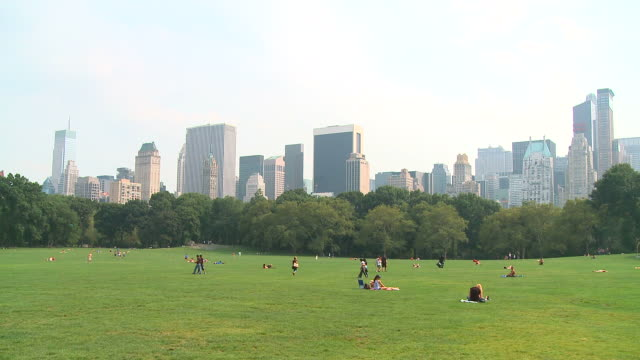 hd: central park - central park manhattan stock videos and b-roll footage