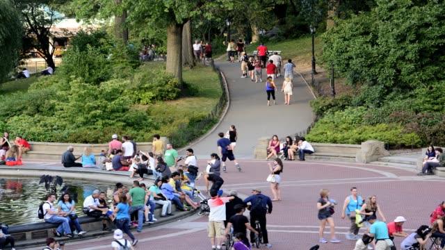central park water fountain, bethesda landscape terrace, new york city, manhattan, usa - ベセスダ点の映像素材/bロール