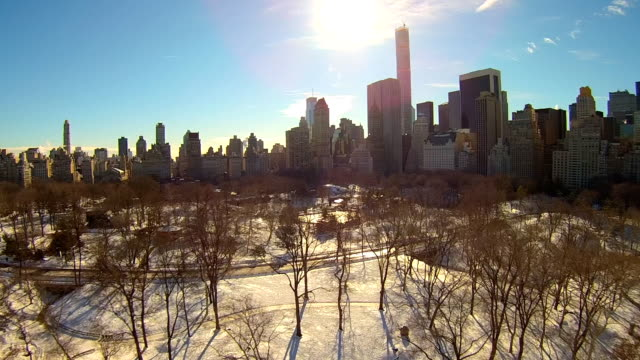 central park winter aerials - central park zoo stock-videos und b-roll-filmmaterial