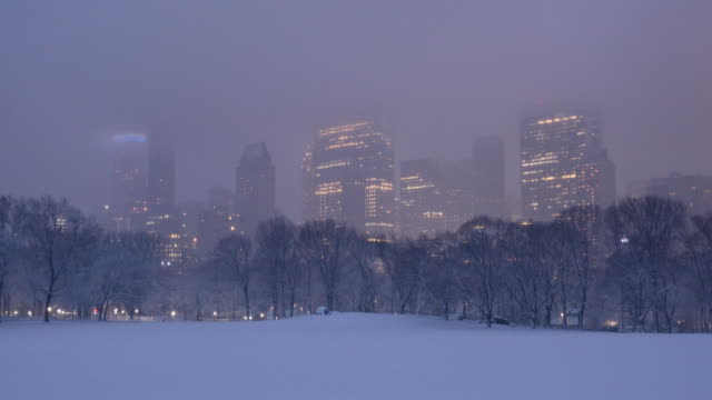 central park winter blizzard - snowing stock videos & royalty-free footage