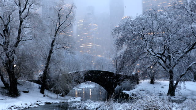 central park winter nächte - winter stock-videos und b-roll-filmmaterial