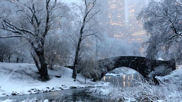 central park winter nights - central park manhattan video stock e b–roll