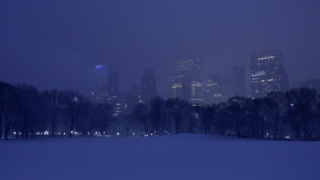 central park winter nights - sheep meadow central park stock videos and b-roll footage