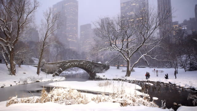 Central Park Winter Snow at Dusk in New York City