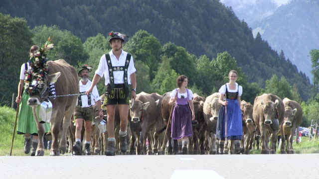 ms ceremonial driving down of cattle from mountain pastures into valley in autumn / schã¶llang, bavaria, germany - traditional clothing stock videos & royalty-free footage