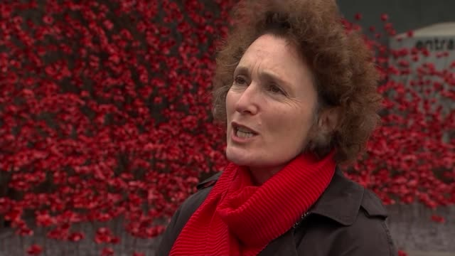 stockvideo's en b-roll-footage met cermaic poppies go on display for the final time in manchester england manchester imperial war museum north ext jenny waldman interview sot - imperial war museum museum