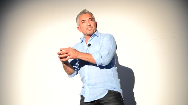 cesar millan at the screening of 'el lider de la manada' cesar millan at the screening of 'el lider de la m on october 15 2012 in miami florida - manada stock videos and b-roll footage