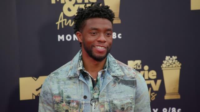 Chadwick Boseman at 2018 MTV Movie TV Awards Arrivals at Barker Hangar on June 16 2018 in Santa Monica California