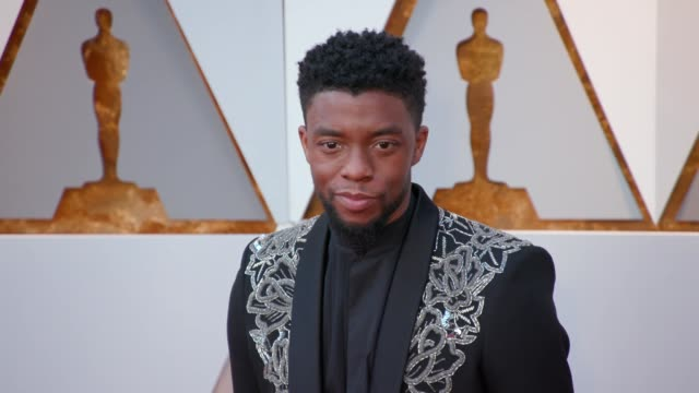 chadwick boseman at 90th academy awards arrivals at dolby theatre on march 04 2018 in hollywood california - 90th annual academy awards stock videos & royalty-free footage