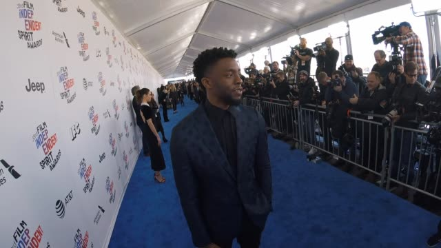 chadwick boseman at the 2018 film independent spirit awards arrivals alternative views on march 03 2018 in santa monica california - chadwick boseman stock videos and b-roll footage