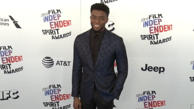 chadwick boseman at the 2018 film independent spirit awards on march 03 2018 in santa monica california - chadwick boseman stock videos and b-roll footage