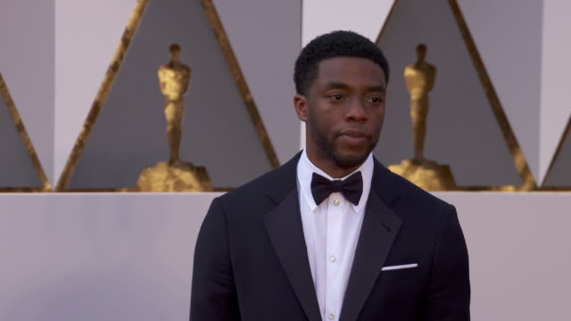 chadwick boseman at the 88th annual academy awards arrivals at hollywood highland center on february 28 2016 in hollywood california 4k - chadwick boseman stock videos and b-roll footage