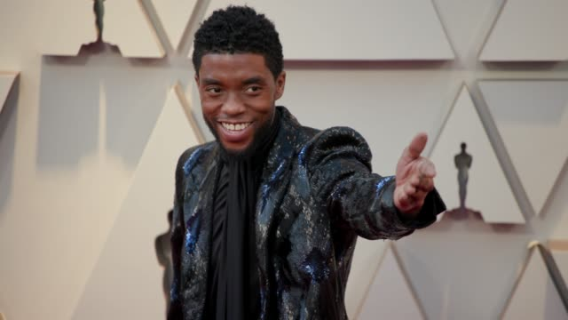 chadwick boseman at the 91st academy awards arrivals at dolby theatre on february 24 2019 in hollywood california - chadwick boseman stock videos and b-roll footage