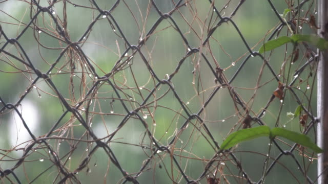 chain fence at raining - fence stock videos & royalty-free footage