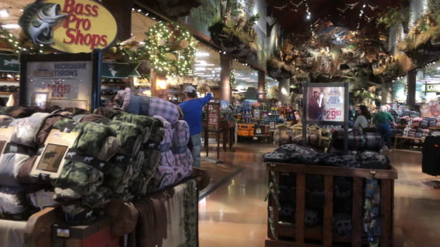 chain store known for its large wildernessthemed stores wide array of hunting fishing outdoor gear - hunting stock videos & royalty-free footage