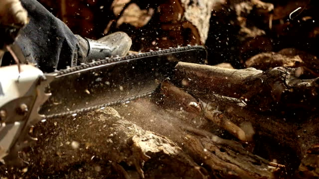 chainsaw in action cutting wood. man cutting wood with saw, dust and movements. - hand saw stock videos and b-roll footage